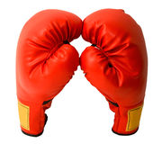 boxninghandskepar Royaltyfri Bild