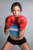 boxningkvinna arkivfoto