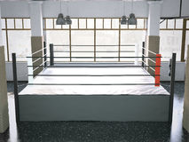 Boxningsring i en idrottshallinre framförande 3d Arkivbilder