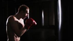 Boxningutbildning med en lagledare stock video