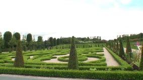 Boxwood garden. At Frederiksborg Palace, Denmark stock video footage