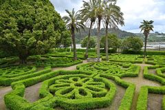 Boxwood maze at Pazo de Marinan stock image