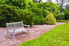 Boxwoods Gardens. Relaxing area of a boxwood garden with a wooden bench. Photographed at the Virginia State Arboretum and Blandy Experimental Farm in Clarke Royalty Free Stock Photography
