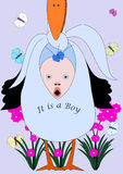 It is a boy. The stork brings a baby in a diaper. It's a boy Stock Image