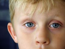 A Boy stock photography