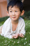 Boy. The little boy lay petals on the lawn to pick up Royalty Free Stock Photos