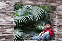 Boy. The young boy sits on the window, behind has the green plant Stock Photos