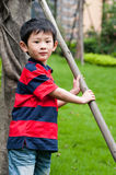 Boy. The weather is good, the young boy enters the nature, breathes the fresh air Stock Photos