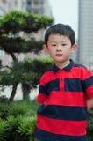 Boy. The Portrait of little boy Royalty Free Stock Photos