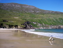 Boy on Achill Head Beach Royalty Free Stock Photos