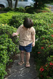 Boy admiring flower. Boy at the garden admiring flower curiously stock images