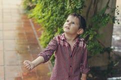 Boy admiring the raindrops. Rainy summer day. Royalty Free Stock Photography