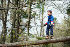 Boy in adventure park Royalty Free Stock Image