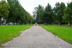A boy from afar runs to the camera. In the park Stock Photography