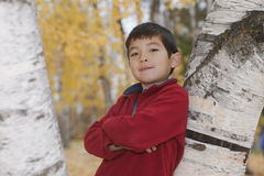 Boy against aspen tree. Royalty Free Stock Image