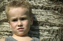 Boy against a tree. Little boy thinking, sitting against a tree royalty free stock photos