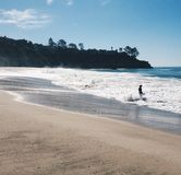 Boy alking into ocean royalty free stock image