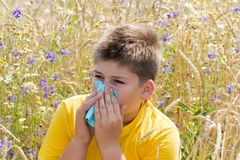 Boy with allergic rhinitis in  meadow  Stock Images