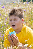 Boy with allergic rhinitis in  meadow Royalty Free Stock Image