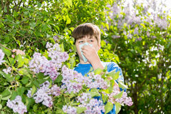 Boy with allergic rhinitis near blossoming lilac Stock Images