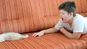 Boy is allergic to cat. The boy is allergic to cat stock video footage