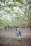 Boy and almond blossom stock photos