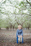 Boy and almond blossom stock photography