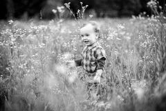 Boy alone in tall grass field royalty free stock photo