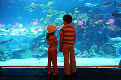Free Boy And Girl In Underwater Aquarium Tunnel Royalty Free Stock Photography - 16332257