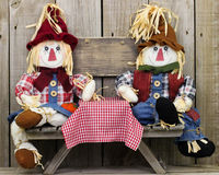 Free Boy And Girl Scarecrows Sitting At Picnic Table With Blank Rustic Wood Sign Stock Image - 42339101