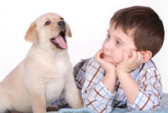 Free Boy And Puppy Stock Images - 1679444
