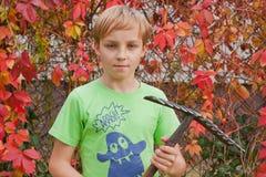 Boy ang garden Royalty Free Stock Photo