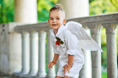 Boy with angel wings on old city background Royalty Free Stock Image
