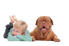 Boy ans a dog Stock Photo