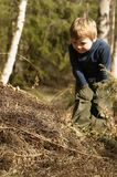 Boy and ant-hill. Three-year-old boy looking at an ant-hill Royalty Free Stock Image