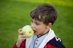 Boy with apple and ball. Beautiful boy with apple and ball stock images