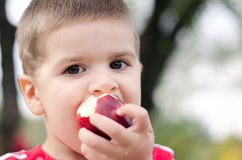 Boy with apple. Boy bitten by a juicy red apple stock photo