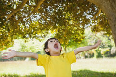 Boy with arms outstretched looking up in park Stock Image