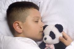 Boy asleep with  bear Stock Image