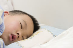 Boy asleep Royalty Free Stock Image