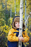 Boy in Aspen forest Stock Images