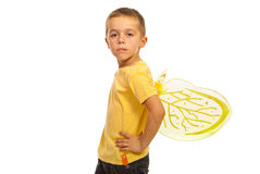 Boy with attitude and bee wings. Boy with attitude and beee wings isolated on white background Stock Images