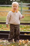 Boy in autumn Royalty Free Stock Photos