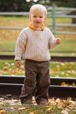 Boy in autumn royalty free stock photos