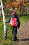 A boy  in the autumn City Park Stock Photography