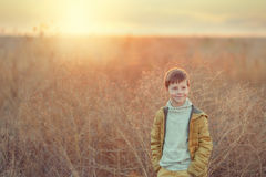 Boy in the autumn field Royalty Free Stock Photography