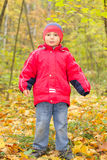 Boy in autumn forest Royalty Free Stock Photography