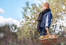 Boy in autumn forest with ful basket of mushrooms Royalty Free Stock Photos