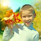 Boy with Autumn Leafs Stock Image