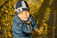 Boy among autumn leaves Stock Photos